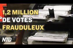 1,2 million de votes frauduleux