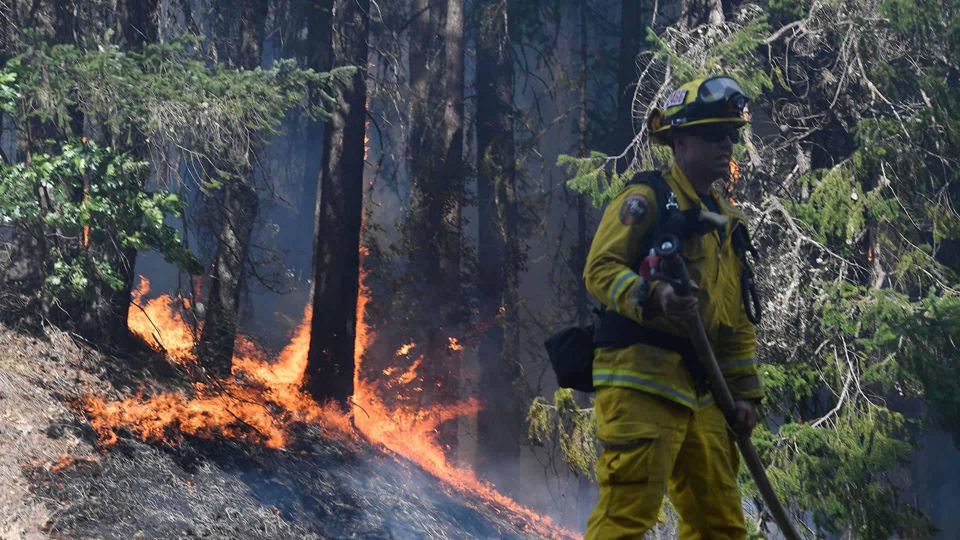 Incendie - Californie
